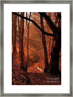 Framed Print featuring the photograph Summer In Sots Hole by Baggieoldboy