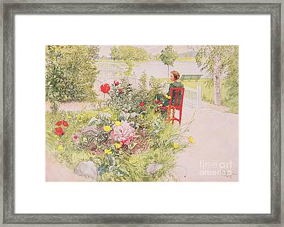 Summer In Sundborn Framed Print by Carl Larsson