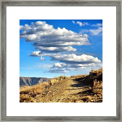 #summer In #sunvalley #idaho #trails Framed Print