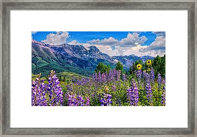 Summer In Telluride Framed Print
