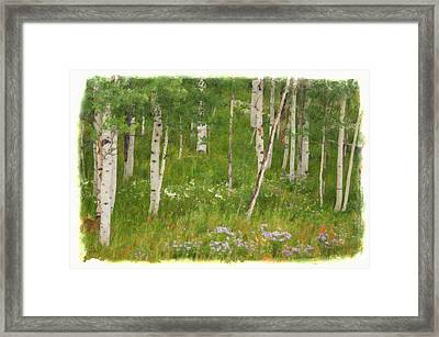 Summer In The Colorado Mountains Framed Print by Priscilla Burgers