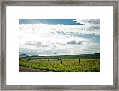 Summer In The Country Framed Print