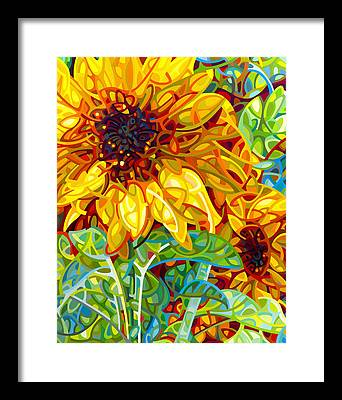 Colour Framed Prints