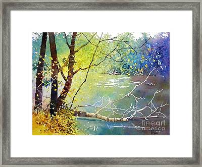 Summer Lakeside Framed Print
