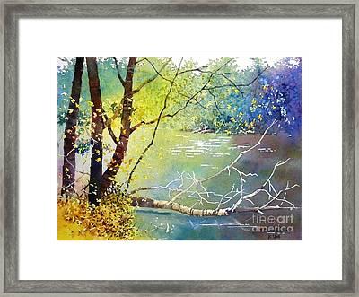 Summer Lakeside Framed Print