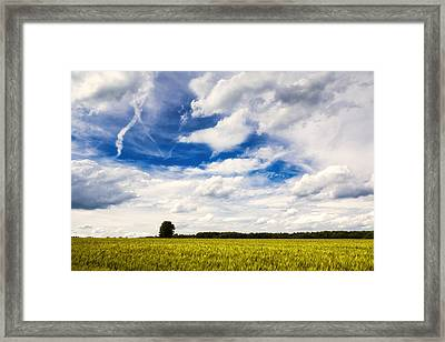 Summer Landscape With Cornfield Blue Sky And Clouds On A Warm Summer Day Framed Print by Matthias Hauser