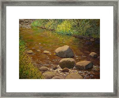Summer Leith Stream  Framed Print by Terry Perham
