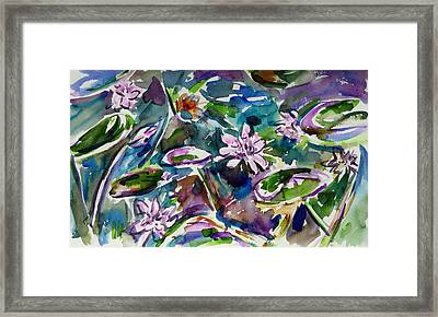 Summer Lily Pond Framed Print by Xueling Zou