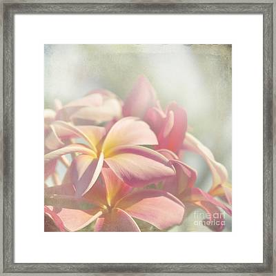 Summer Love Framed Print by Sharon Mau
