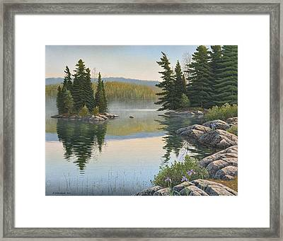 Summer Mist Framed Print
