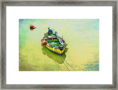 Framed Print featuring the photograph Summer Morning by Brian Tarr