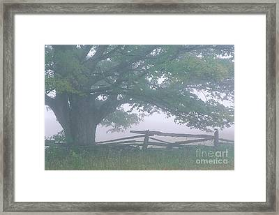 Framed Print featuring the photograph Summer Morning Fog by Alan L Graham