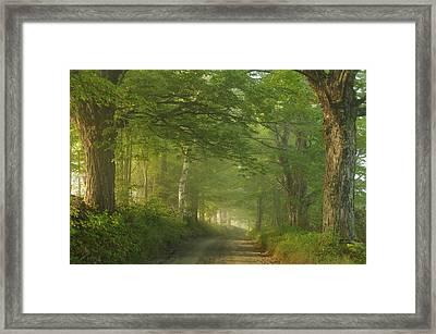 Summer Morning, Cory Hill Road Framed Print