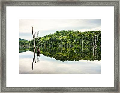 Summer Morning On Monksville Reservoir 2 Framed Print by Gary Heller