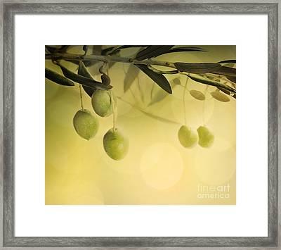 Summer Olives Design Framed Print by Mythja  Photography