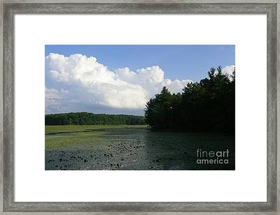 Summer On The Reservoir 2 Framed Print by Betsy Cotton