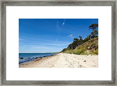 Summer On The Vineyard Framed Print by Michelle Wiarda