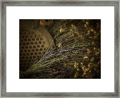 Summer Palette Framed Print by Amy Weiss