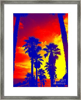 Summer Palms Framed Print
