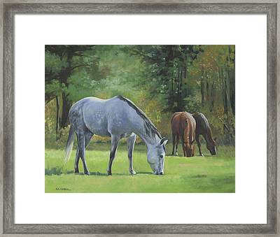 Summer Pasture Framed Print by Alecia Underhill