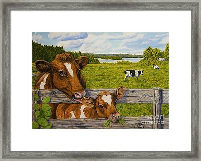 Summer Pasture Framed Print