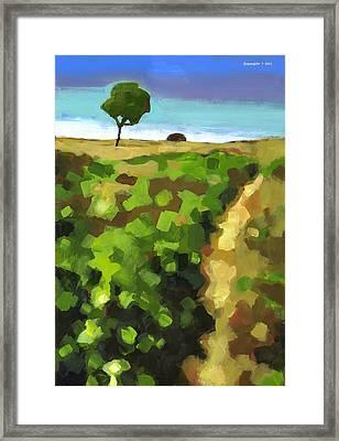 Summer Path Framed Print by Douglas Simonson