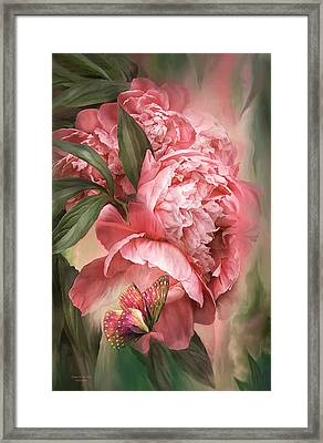Summer Peony - Melon Framed Print by Carol Cavalaris
