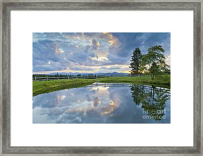Summer Pond Reflection Framed Print