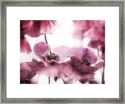 Summer Framed Print by Priska Wettstein