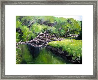 Summer Reflection Framed Print