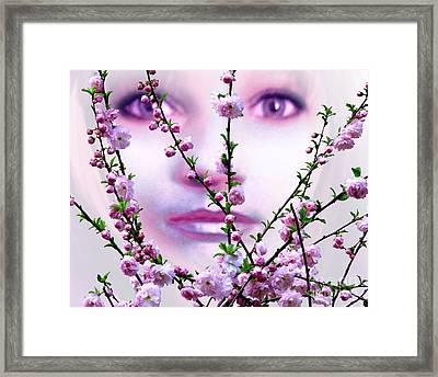 Summer Rose Framed Print by Tlynn Brentnall