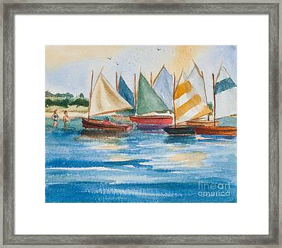 Summer Sail Framed Print by Michelle Wiarda