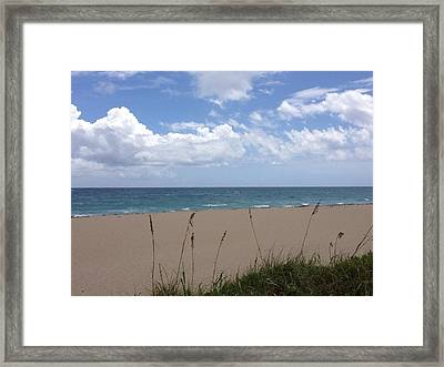 Summer Shore Framed Print