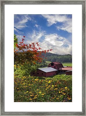 Summer Skies Framed Print by Debra and Dave Vanderlaan