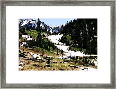 Summer Snow Framed Print