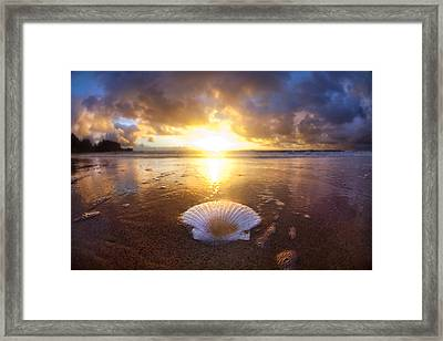 Summer Solstice Framed Print by Sean Davey