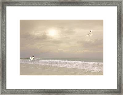 Summer Splendor Framed Print