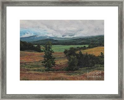 Summer Storm Framed Print by Gregory Arnett