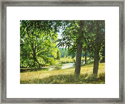Summer Stream Framed Print