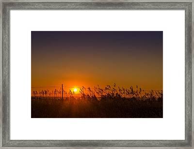 Summer Sunrise On The Plains Framed Print