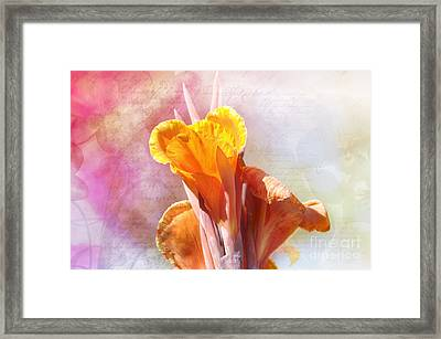 Summer Sunset Framed Print by Elaine Manley