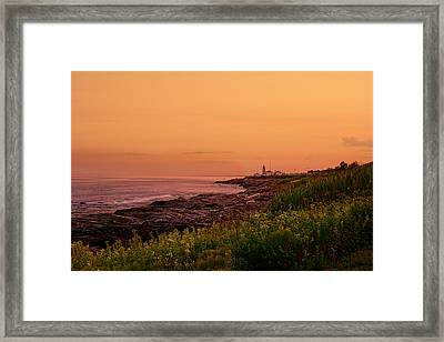 Summer Sunset Framed Print by Lourry Legarde