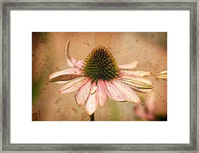 Summer Survival Framed Print