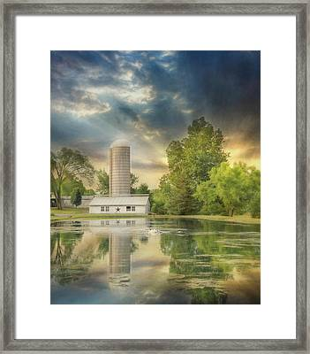 Summer Swans Framed Print by Lori Deiter