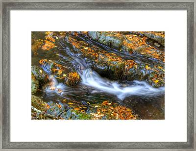 Summer Swept Away Framed Print by John Adams