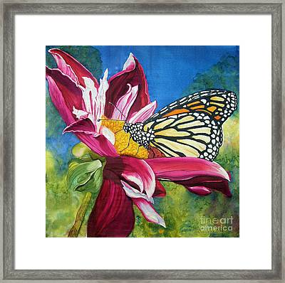 Summer Time Framed Print by Anderson R Moore