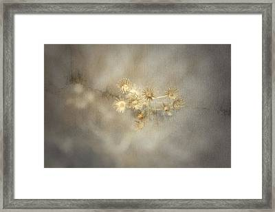 Summer Toast Framed Print