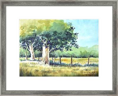 Summer Trees Framed Print by Rick Mock