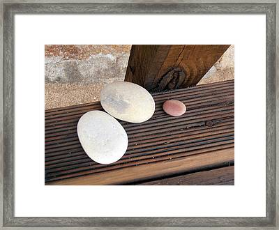 Summer Trio Framed Print