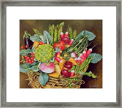Summer Vegetables Framed Print by EB Watts